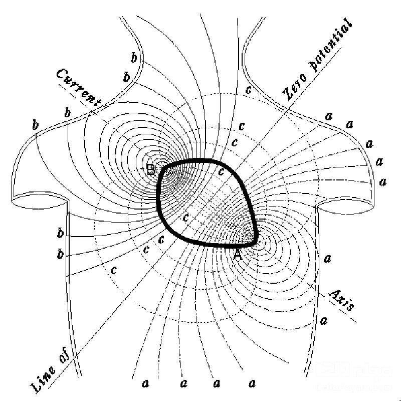 میدان مغناطیسی قلب انسان