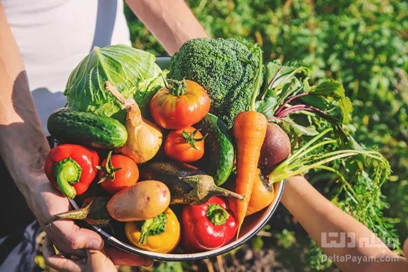 انواع گیاه خواری