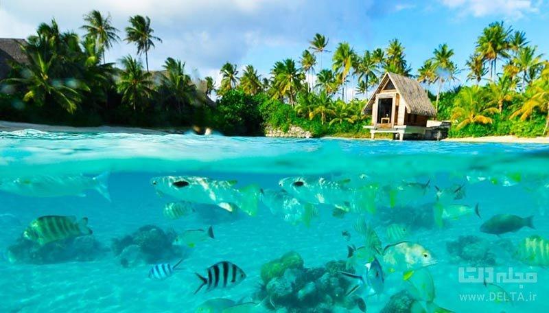 گردش در جزیره بورا بورا