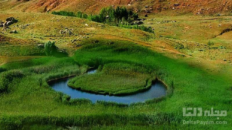 جزیره شناور
