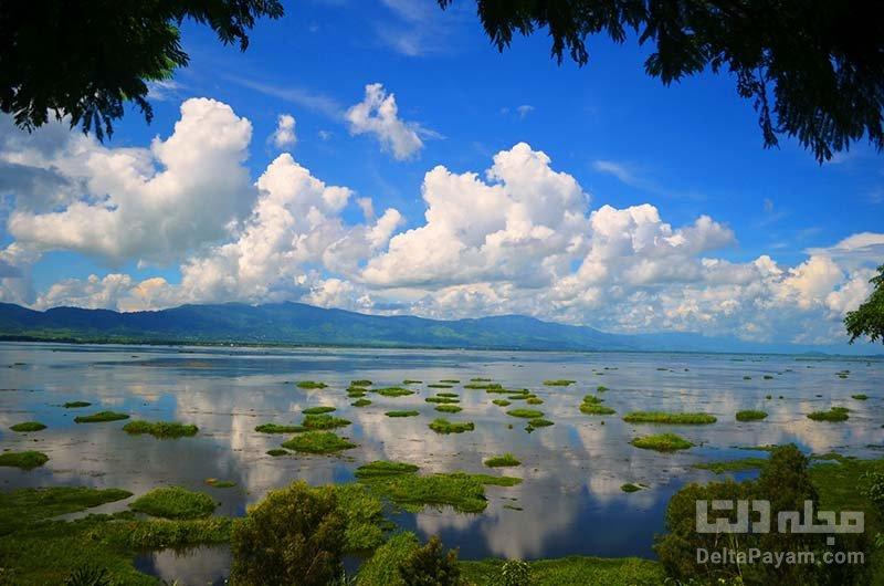 حیات وحش دریاچه لوکتاک