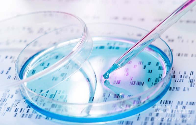 روش جدیدی که سلول های سرطانی را برای همیشه نابود میکند