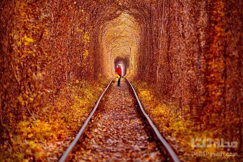 تونل کلاون