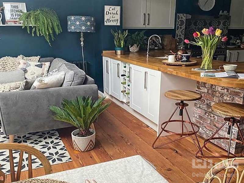 رنگآشپزخانه و پذیرایی