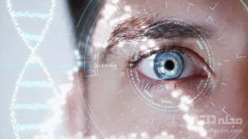 جوان سازی سلول های چشم و معکوسسازی روند تضعیف بینایی