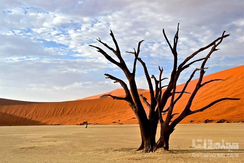 دره مرگ نامیبیا