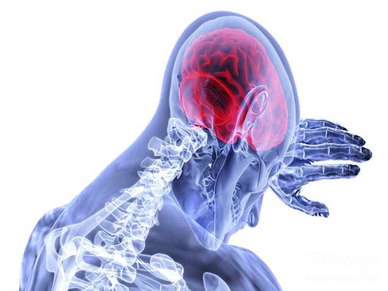 سروتونین در مغز موجب افزایش صبر میشود
