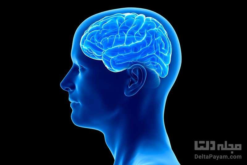 حمله ویروس کرونا به مغز انسان