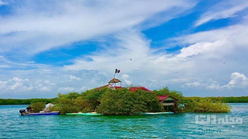 جزیره پلاستیکیشناور