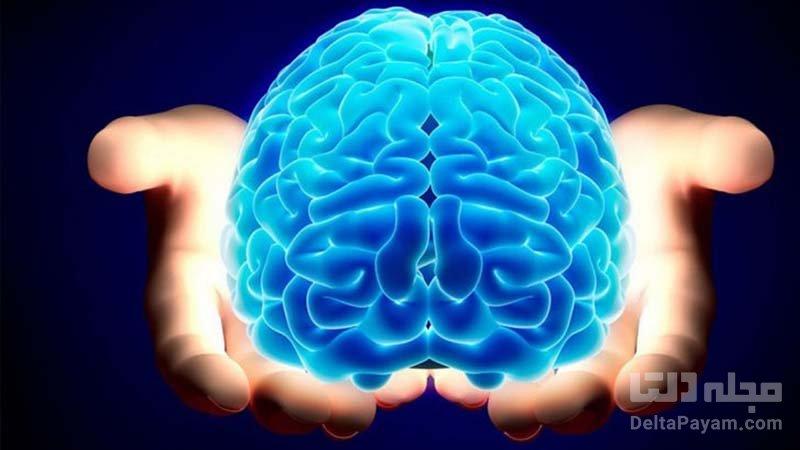 افراد تنها عملکرد مغزی متفاوتی دارند