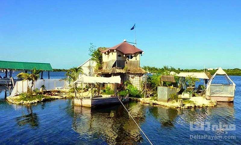 جزیره ریچاد سوآ