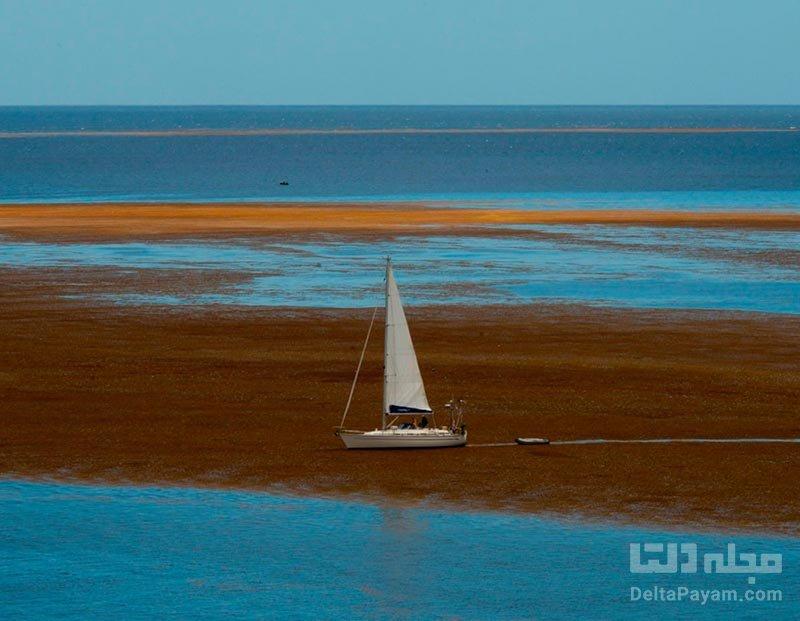 دریای سارگاسو دریای بدون ساحل