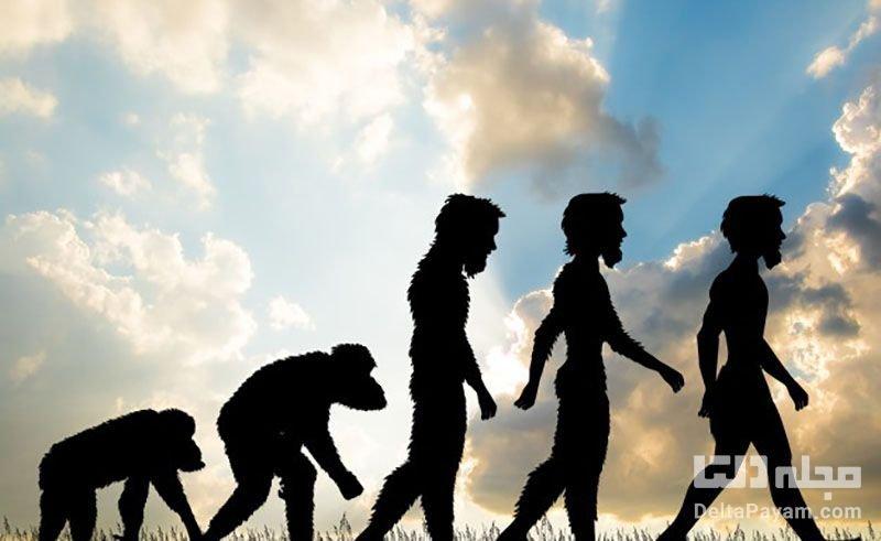 تکامل انسان در آینده