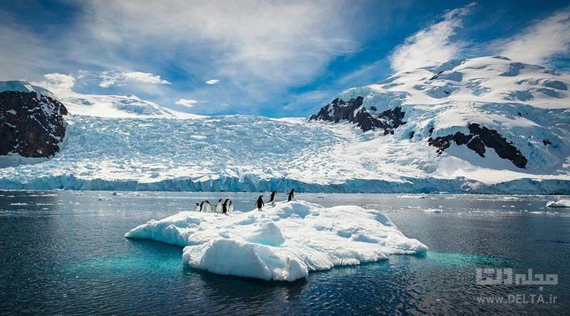 آشنایی با قطب جنوب