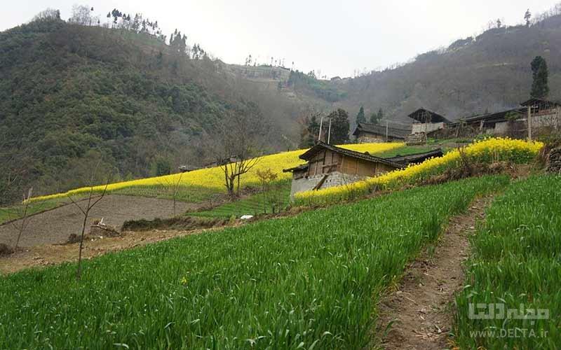 روستای رومانو یا زرگر