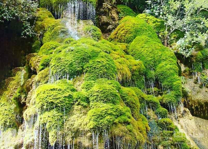 آبشار حرام او از دیدنی های روستای لاویج