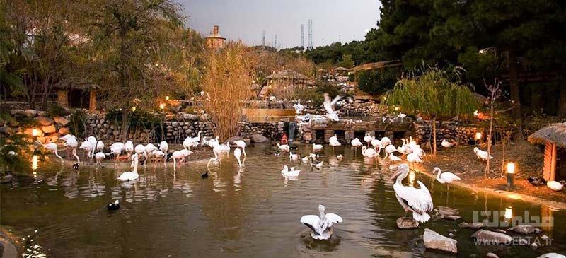 بازدید از باغ پرندگان در تهرانگردی در بهار