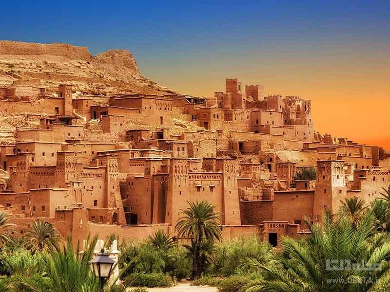 مراکش و بزهای درختی مراکش