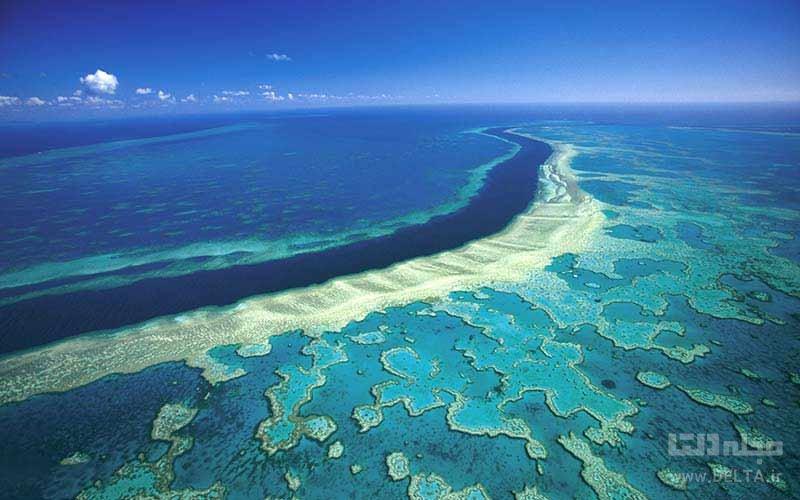 دیواره بزرگ مرجانی ، نابودی جاذبه های جهان