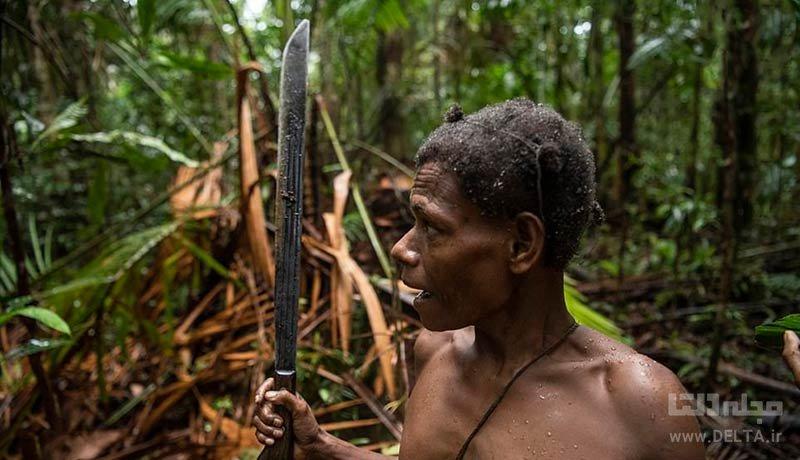 قبیله کولوفو در استان پاپوآ در اندونزی