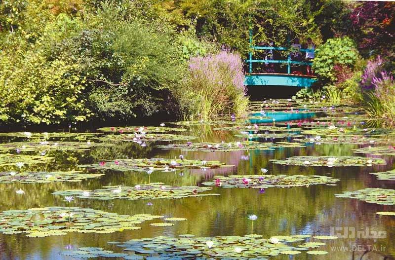 درباره دریاچه مونت در ژاپن بیشتر بدانیم