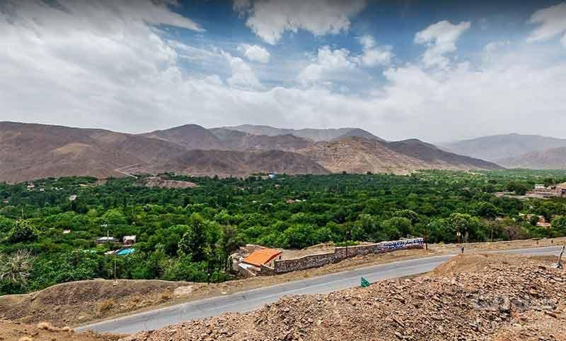 پوشش گیاهی روستای سیرچ