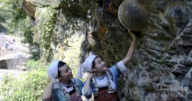 سرنوشت تخممرغهای صخره تخم گذار چه میشود؟