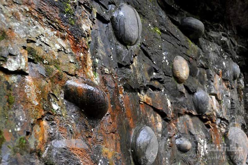 صخره مرموز چان دا یا، صخره تخم گذار