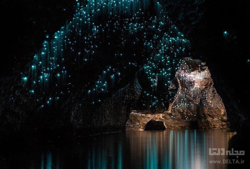 غار وایتومو نیوزلند