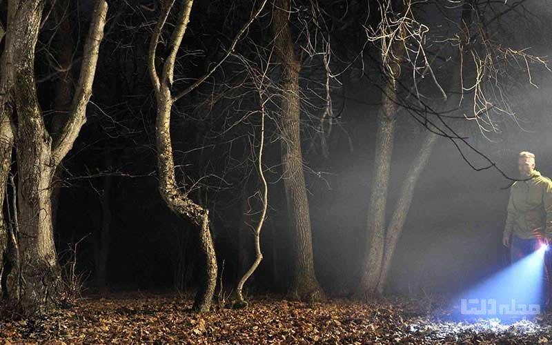 جنگل ارواح هویاباچو