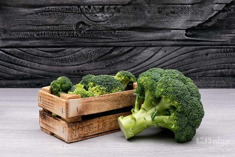 مواد غذایی مفید برای مغز