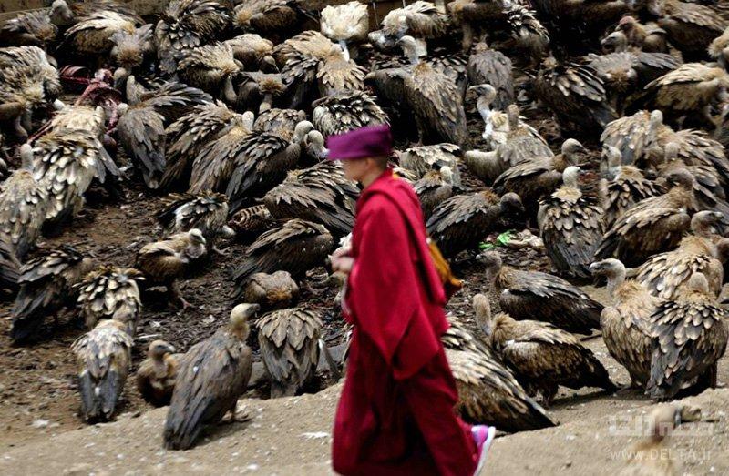 مراسم تدفین در تبت
