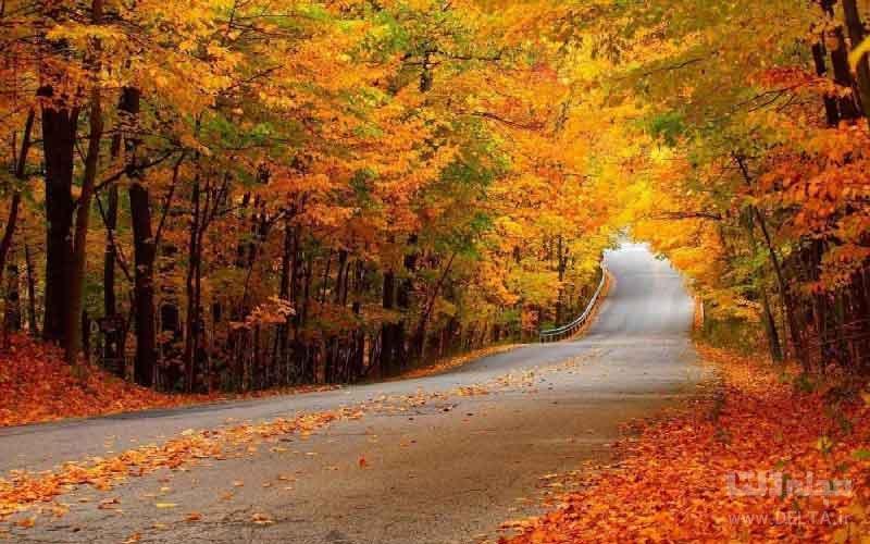 جنگل های پاییزی اطراف تهران