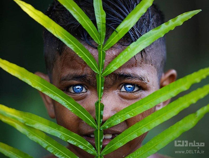 رنگ چشمان اعضای یک قبیله