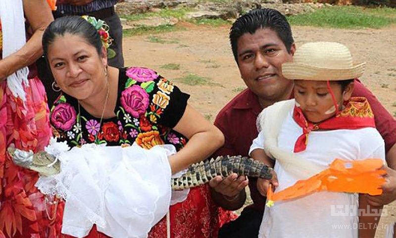 ازدواج با تمساح در مکزیک