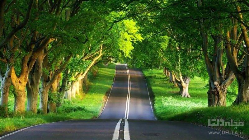 از این جادههای زیبای ایرانی حتما عبور کنید