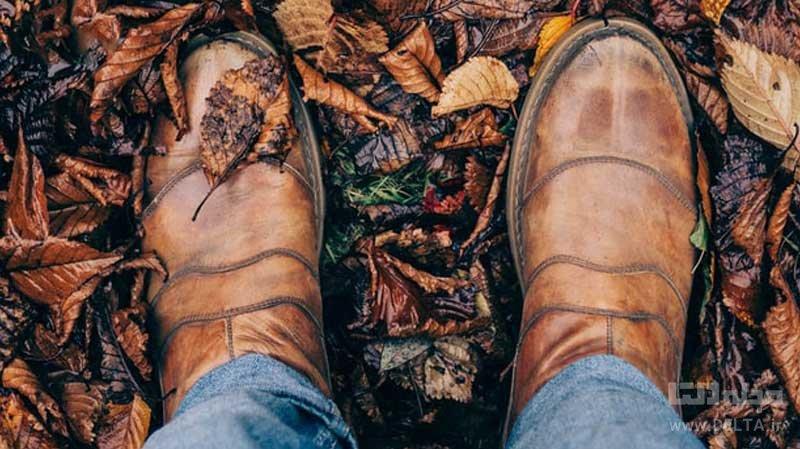 جنس کفش